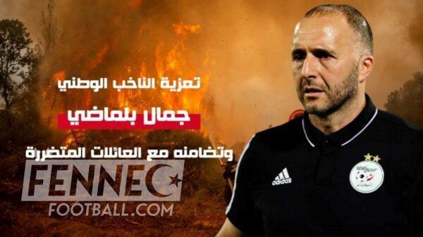 Incendies Algerie