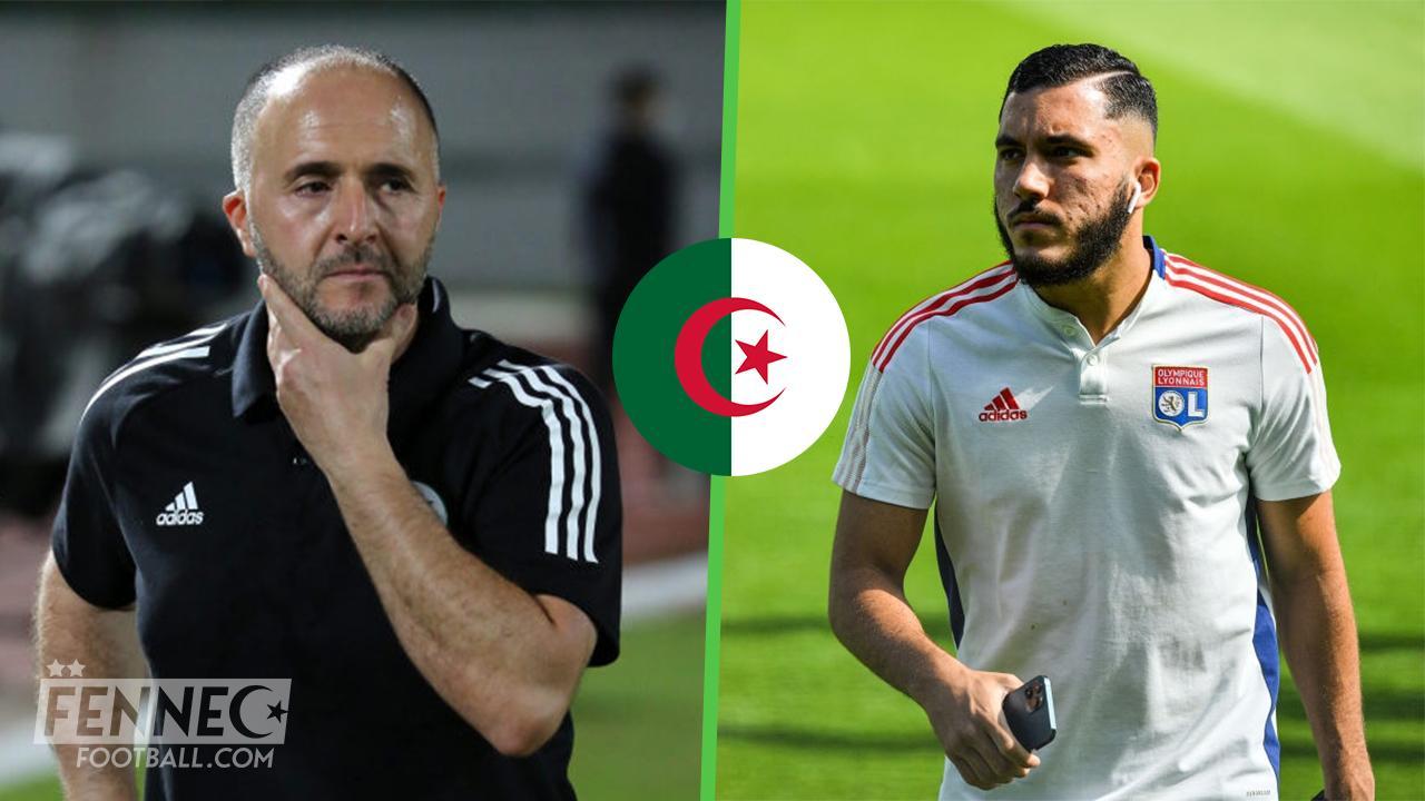 Rayan Cherki Belmadi Algerie